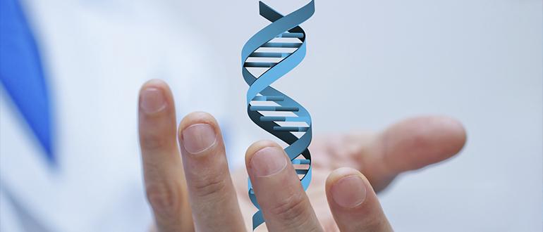 Экспертиза ДНК (судебная и независимая) мск
